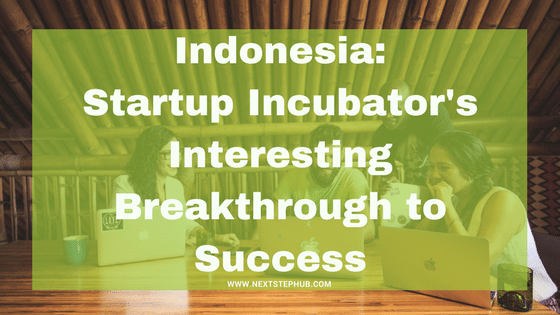 startup incubator indonesia success